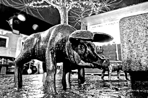 Schweinchenbrunnen Amberg
