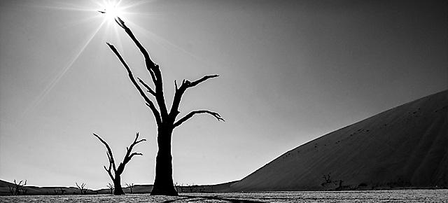 Geschützt: Namibia. Sonne, Sand und tote Bäume.