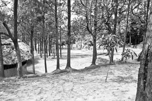 Jinka.Camping
