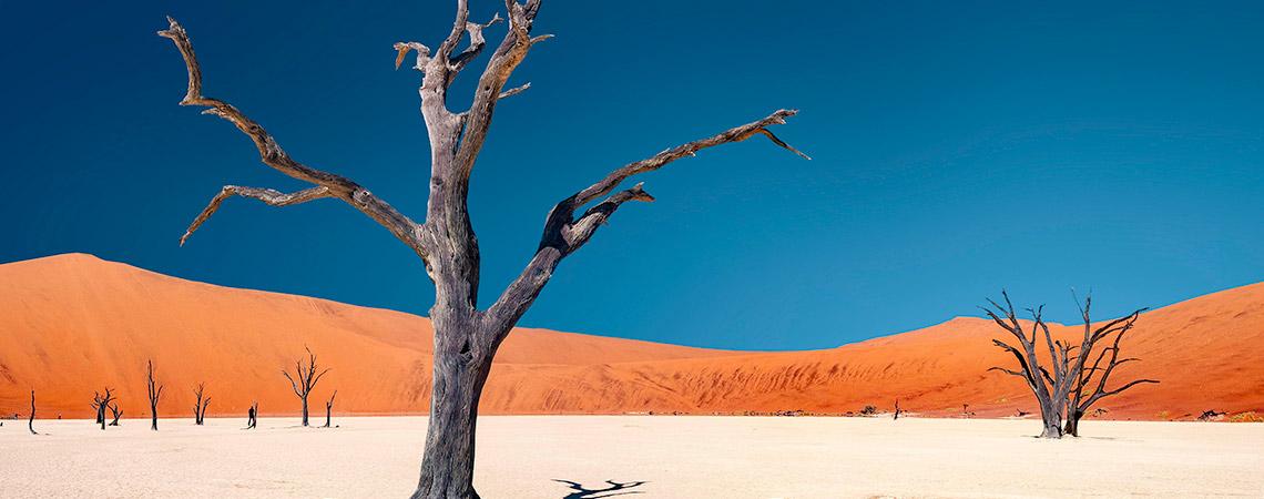 Namib-Dead-Vlei
